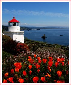 Trinidad Memorial Lighthouse II, Trinidad, California Copyright: Gerald Neufeld