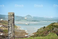 Rural Fencing and Landscape, New Zealand royalty-free stock photo New Zealand Landscape, Fencing, Image Now, Royalty Free Stock Photos, Fences
