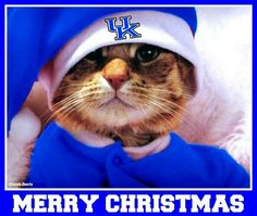 Merry Christmas from one wildcat to another :)