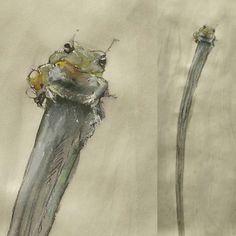 Valente!  Nanquim e aquarela. Papel Pólen 95gm 297 x 42 cm. . Brave!  Nankin and watercolor. Polen paper 95gr 297 x 42 cm. . . . . . . . . . . . . . #art #illustration #ink #watercolor #drawing #draw #picture #photography #artist #sketch #sketchbook #paper #pen #pencil #artsy #instaart #rascunho #instagood #desenho #arte #rascunho #gallery #masterpiece #creative #photooftheday #instaartist #graphic #graphics #artoftheday