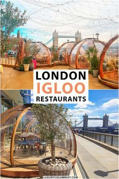 London Igloo Restaurants   Private dining pods in London   #London   #England   #UK   #TravelTips Europe Travel Guide, Travel Guides, Amazing Destinations, Travel Destinations, Travel England, England Uk, London England, London Guide, Things To Do In London
