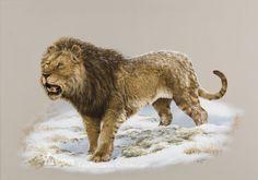 American Lion by George \'Rinaldino\' Teichmann