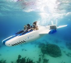 Necker Nymph Aero Submarine