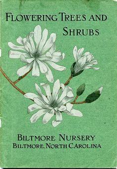 Flowering Trees and Shrubs: Biltmore Nursery, Biltmore, North Carolina, [Cover], 1909
