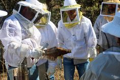 Learn tricks of the trade from professionals at our #BeeWell #Beekeeping Boot Camp. http://beewellhoneyfarm.com/product/bee-well-beekeeping-boot-camp/