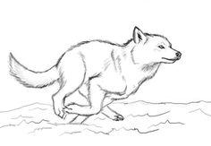 DeviantArt: More Like Running Wolf by Vargablod