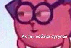 Cute Cat Memes, Cute Love Memes, Memes Funny Faces, Cartoon Memes, Stupid Memes, Dankest Memes, Cute Backgrounds For Iphone, Hello Memes, Alone Photography