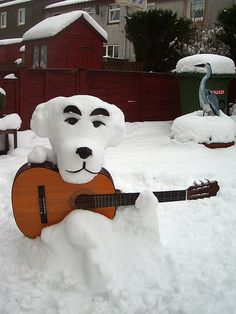 Snow dog playing the guitar