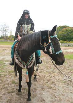 Arabian Horse Costume