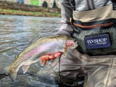 43 Fly Fishing Stuff Recommended Ideas In 2021 Fly Fishing Gear Fly Fishing Fishing Gear