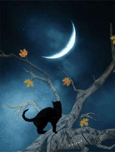 Te deseamos una linda noche, que duermas bien. y una linda semana . Fantasy Kunst, Fantasy Art, Animals And Pets, Cute Animals, Gato Gif, Image Chat, Good Night Gif, Black Cat Art, Beautiful Gif