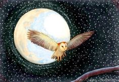 'Moon Owl' - illustration by Tim Budgen ~ Watercolor Paintings Of Animals, Owl Wings, Owl Artwork, Owl Moon, Whimsical Owl, Owl Illustration, Owl Bird, Bird Pictures, Moon Art