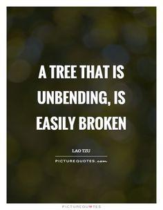 44 Ideas Tree Of Life Quotes Wisdom Truths For 2019 Tree Of Life Quotes, Birch Tree Art, Pine Tree Tattoo, Tree Wedding Invitations, Celtic Tree Of Life, Broken Quotes, Tree Carving, Art Prints Quotes, Tree Photography