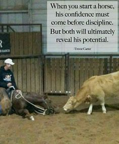 Your horse needs confidence. {I want a cutting horse like this!! He's practically sitting on the ground!!}