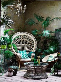 Bring the outdoors in with the top trend of the season, all things tropical!