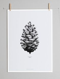 Illustration inspiration | #1221