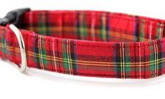 Tartan Dog Collar / Adjustable / Holiday Dog