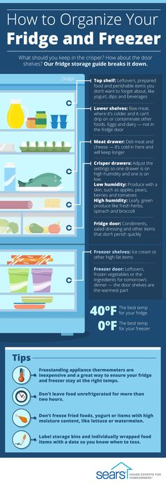 How to Organize Your Fridge and Freezer the Right Way — What type of food should you keep where? Our infographic shows you how to maximize your fridge space and help your food last longer.