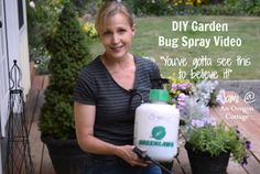 The DIY Garden Bug Spray Video - you've gotta see it to believe it! An Oregon Cottage