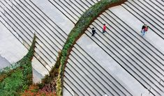The garden climbs the stairsA dynamic shape of nature: the garden climbs the stairs, running in undulating lines of different textures and colors. It moves in time and with t... Architecture