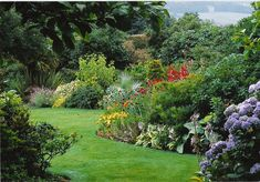 images of shrub borders - Google Search