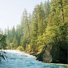 Sequoia - itineraries for 1, 2 and 3 day stays