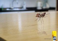 Pledge---Furniture-polish.jpg (1080×762)