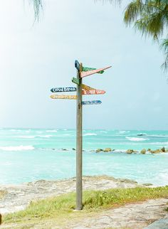 Zeds Surfing, Barbados | mandy mayberry photography