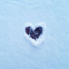 Morning snow ❄️