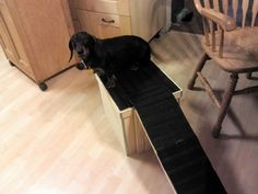 DIY Dog Platform Ramp...Perfect for older dogs with arthritis or small breeds.