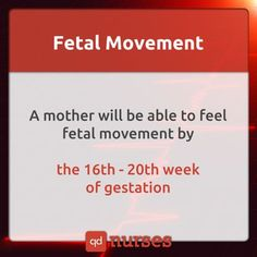 Fetal Movement More memes Newborn Nursing, Child Nursing, Ob Nursing, Nursing Career, Nursing Tips, Nursing Students, Nursing Programs, Medical Students, Maternity Nursing