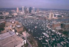 Gasparilla Pirate Fest! That's where I be in 15 days!
