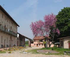 Agriturismo Cascina Santa Brera - San Giuliano Milanese (MI)