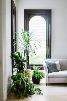 black arched windows