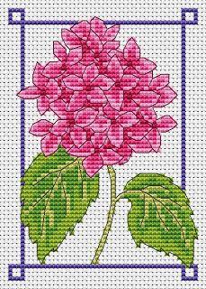 August hydrangea free cross stitch chart   Amanda Gregory cross-stitch design