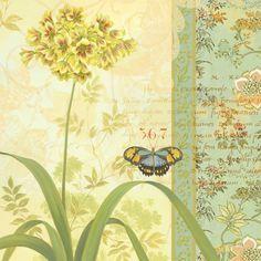 Alliums 1
