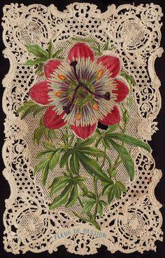 The Passion Flower (symbolizing Palm Sunday)