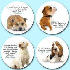 Dogs popular with the pet loving British. Four of the most popular dogs printed onto genuine beermat board. Beer Mats, Dog Cat, British, Teddy Bear, Popular, Pets, Printed, Board, Nature