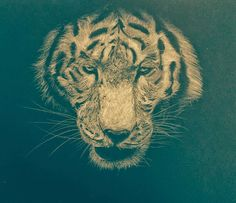 Tiger of the tigers.