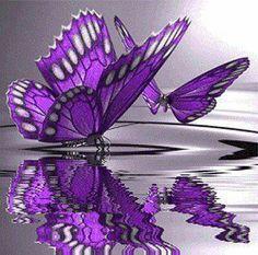 Butterflies  http://www.bareindulgence.net