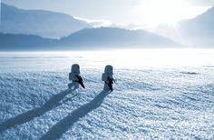 """""""Ice Walk"""" by leg0fenris on sync-blog.com"""