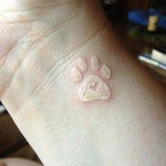 Paw print tattoo, white ink, love heart.