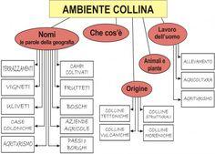 LA COLLINA - MAPPA COMPLETA
