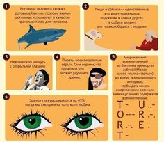 Интересные факты о наших глазах
