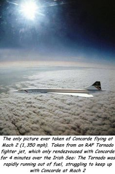 Hilarious Pics of the day Concorde, Concord Airplane, Europe Travel Tips, Europe Packing, Traveling Europe, Backpacking Europe, Packing Lists, Travel Deals, Travel Hacks