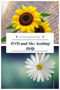 PND and Me: Seeking Help - Me, him, the dog and a baby!