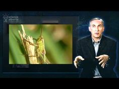 What is Biodiversity?--VIDEO (4:16) Think about biodiversity...