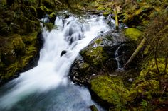 Water cascades over a feeder falls adjacent to Sol Duc Falls in Olympic National Park, Wash. on Saturday, March 22. (Michael Arellano/Emerald)