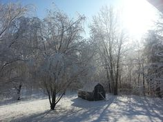 The beauty of winter.