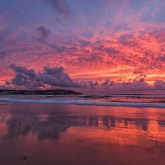This was the incredible display Mother Nature put on in #bondibeach @sydney.  Este amamecer nos los ofrece la madre naturaleza esta mañana en las playas de Bondi beach en Sydney.  Thank you @nikkibings #sunrise #amanecer #mothernature #ILoveAustralia #Austalia #NSW #bondibeachsydney #coffetime #breathtaking__snaps #breathtaking #amazing #colombianosenbrisbane #brisbaneblogger #colombianblogger #amazingviews #visitaustralia #visitnsw by colombianosenbrisbane http://ift.tt/1KBxVYg